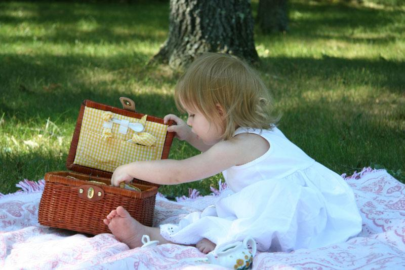 1335738333_picnic_1